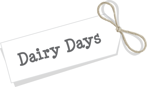 Dairy Experience Days Banner